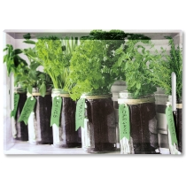 Serviertablett, Herbs